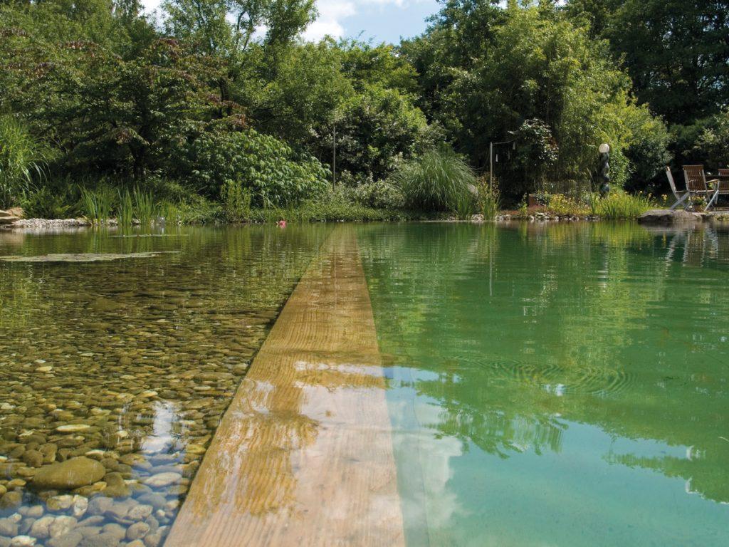 schwimmteich poolbau gartenbau baumteufel garten und landschaftsbau berlin brandenburg